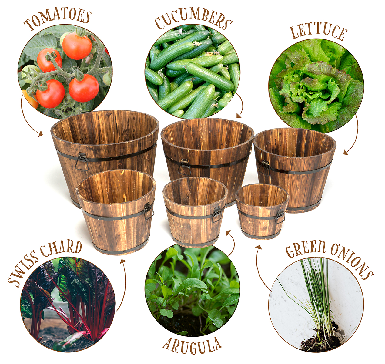 Grow Your Own Salad Bar
