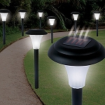 Solar-Powered LED Accent Light